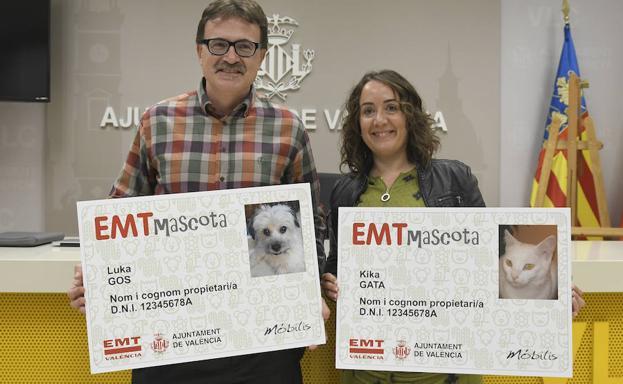 452a73a35 La EMT crea un carnet para que las mascotas puedan ir en los autobuses