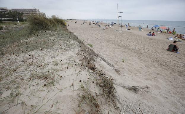 Dunas destrozadas por las tormentas en la playa de la Garrofera. /JESÚS SIGNES